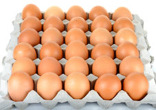 Egg in packet  on the white background Stock Image