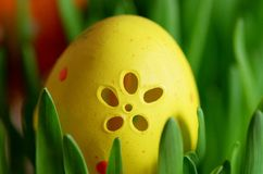 The egg painted in yellow color, Stock Photos
