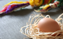 Egg and palms. Egg in the nest with palms Royalty Free Stock Photography