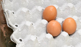 Egg on the paper caste. Egg is on the paper caste Royalty Free Stock Photography