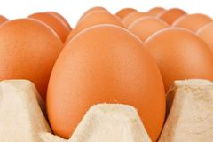Egg in paper the package Stock Photo