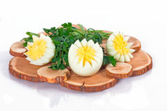 Egg and parsley Stock Photos