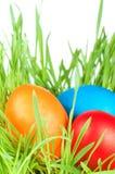 Egg pascua en una hierba Imagen de archivo