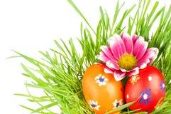 Egg pascua en una hierba Foto de archivo libre de regalías