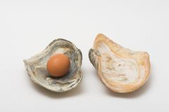 Egg pearl Stock Images
