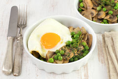 Egg with peas and mushrooms Stock Images