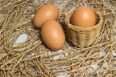 Egg is on the pile Stock Image