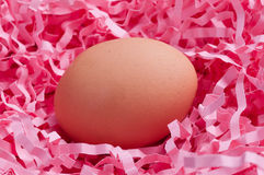 Egg in pink chips. Egg in pink packing chips Royalty Free Stock Photography