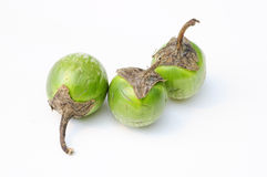 Egg plant. Three green egg plant on a white background stock photography