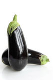 Egg plants stock photography
