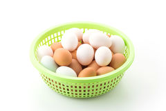 egg in plastic basket Stock Photography