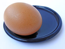 Egg on plate Stock Image