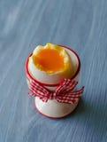 egg plate Royaltyfria Foton
