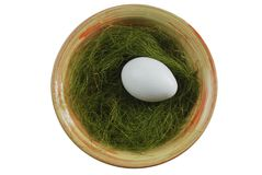 Egg in a plate with green grass over white Stock Photos