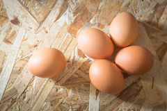 Egg on plywood View from the top Royalty Free Stock Photos