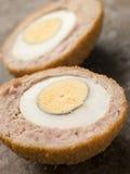 egg pokrojone w połowie szkocką Fotografia Royalty Free