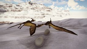 Egg and pterodactyl 3d rendering. Egg and pterodactyl fighting with each other Stock Photography