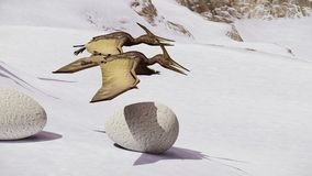 Egg and pterodactyl 3d rendering. Egg and pterodactyl fighting with each other Royalty Free Stock Photography