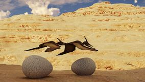 Egg and pterodactyl 3d rendering. Egg and pterodactyl fighting with each other Royalty Free Stock Images
