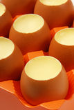 Egg Pudding Stock Photography