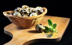 Egg, quail,. Egg  quail black background  useful  food  diet Stock Photo