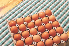 Egg rack. Raw chicken eggs in a rack royalty free stock image