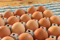 Egg rack royalty free stock photos
