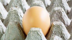 Egg raw food breakfast Stock Photos