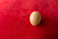 Egg on red carpet background.  Royalty Free Stock Image