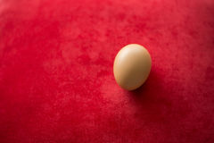Egg on red carpet background.  Royalty Free Stock Photo