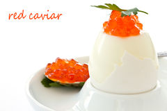 Egg with red caviar Stock Photography