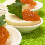 Egg with red caviar Royalty Free Stock Image