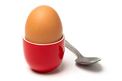 Egg in cup isolated on white background Royalty Free Stock Images