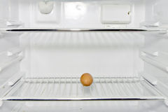 An egg in a refrigerator Royalty Free Stock Image