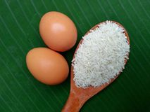Egg and rice Royalty Free Stock Photos