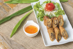 Egg roll or Spring roll or Popiah Royalty Free Stock Photo