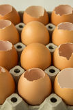 Egg row. Egg is row for food raw Royalty Free Stock Photos