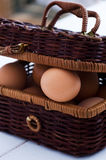 Egg in rustic basket Stock Images