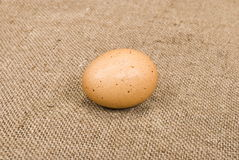 Egg on sackcloth background Royalty Free Stock Photography