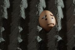 Egg with sad face in egg tray. Egg with sad face painted on it alone in a cardboard egg carton facing out of the frame Stock Images