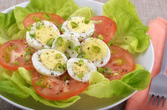 Egg salad Stock Photography