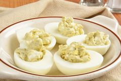 Egg salad appetizers Royalty Free Stock Image