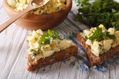 Egg salad with onions and mayonnaise closeup. Horizontal Royalty Free Stock Photography