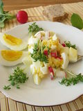 Egg salad with radish Stock Photography