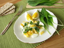 Egg salad with ramsons. Egg salad with fresh ramsons Royalty Free Stock Image