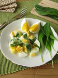 Egg salad with ramsons Royalty Free Stock Photography