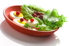 Egg salad on a red round dish. Over white background royalty free stock photography