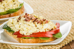 Egg salad sandwhich on a white plate Stock Photo