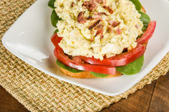 Egg salad sandwhich on a white plate Stock Images