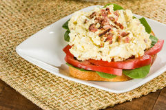 Egg salad sandwhich on a white plate Royalty Free Stock Image